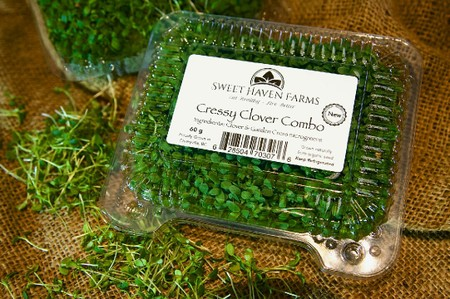 Micro-Greens, Cressy Clover Combo (non-org) - so good!