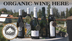Summerhill Organic Wine